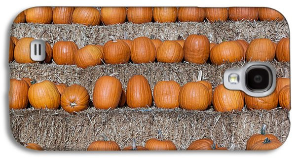 Galaxy S4 Case featuring the photograph Pumpkin by Lora Lee Chapman