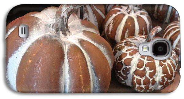 Pumpkins And Gourds Fall Autumn Brown White Pumpkins - Colors Of Autumn Galaxy S4 Case