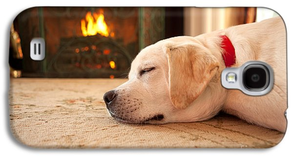 Puppy Sleeping By A Fireplace Galaxy S4 Case by Diane Diederich