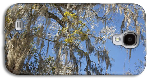 Pure Florida - Spanish Moss Galaxy S4 Case by Christine Till