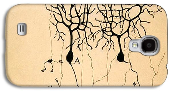 Purkinje Cells By Cajal 1899 Galaxy S4 Case