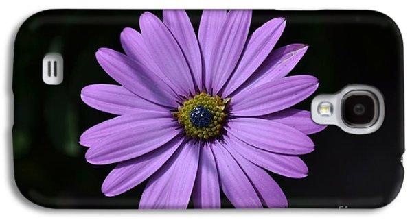 Purple African Daisy Galaxy S4 Case