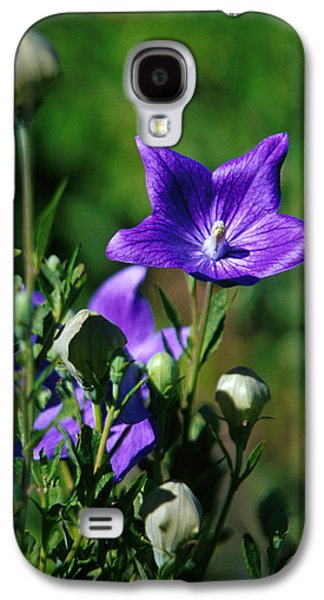 Purple Balloon Flower Galaxy S4 Case by Anonymous
