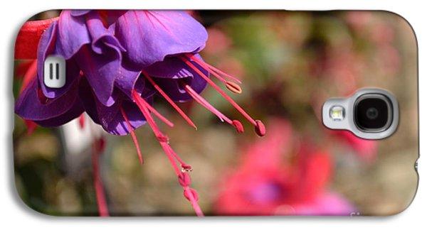 Purple Fuchsia Galaxy S4 Case