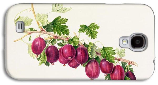 Purple Gooseberry Galaxy S4 Case