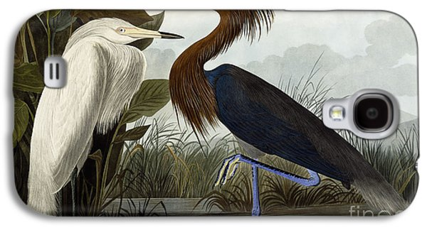 Purple Heron Galaxy S4 Case by John James Audubon