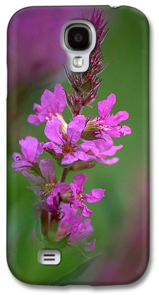Purple Loosestrife Galaxy S4 Case