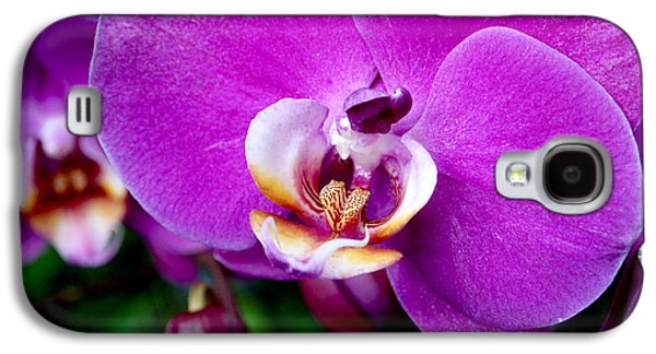 Purple Orchid Galaxy S4 Case
