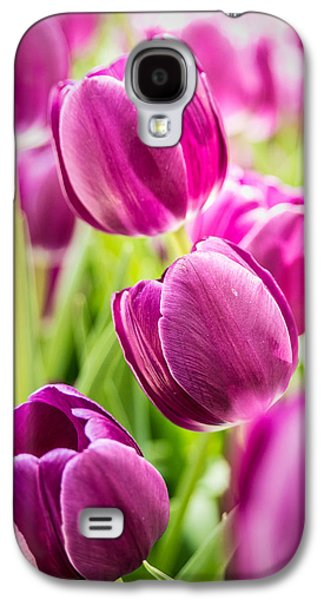 Purple Tulip Garden Galaxy S4 Case