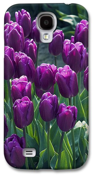 Purple Tulips Galaxy S4 Case