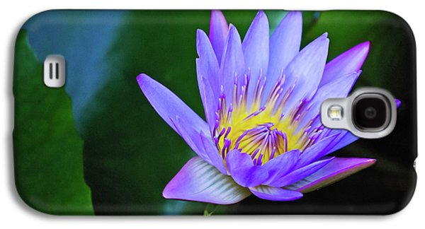 Purple Water Lily Galaxy S4 Case