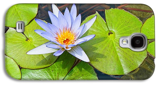 Purple Water Lily In Pond. Galaxy S4 Case by Jamie Pham
