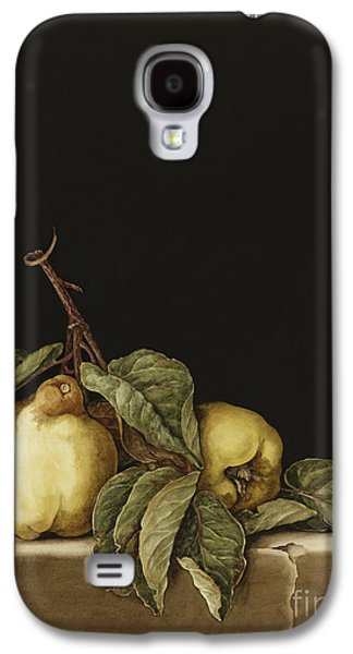 Quinces Galaxy S4 Case by Jenny Barron