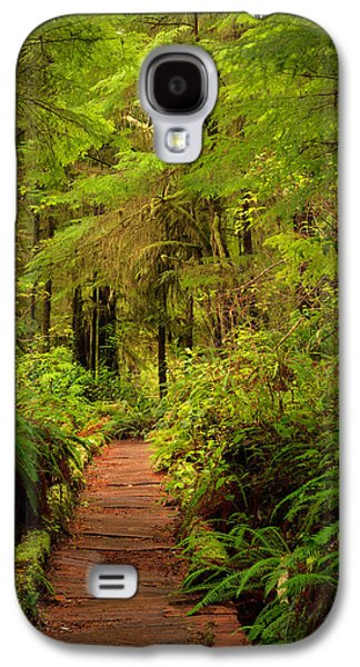 Quinualt Rain Forest Path Galaxy S4 Case by Leland D Howard