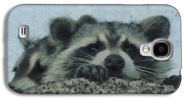 Raccoons Painterly Galaxy S4 Case by Ernie Echols