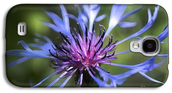 Radiant Flower Galaxy S4 Case by Belinda Greb