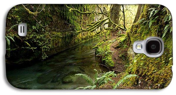 Rain Forest 2 Galaxy S4 Case by Randy Giesbrecht