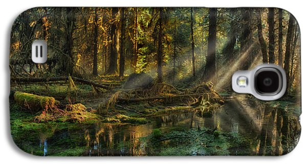 Rain Forest Sunbeams Galaxy S4 Case