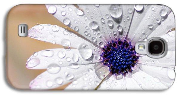 Rain Soaked Daisy Galaxy S4 Case