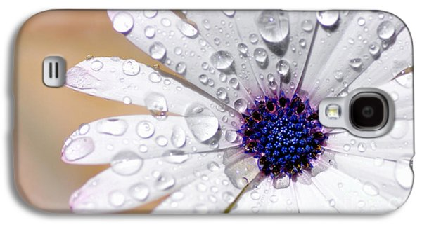 Rain Soaked Daisy Galaxy S4 Case
