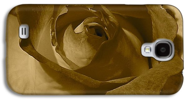 Rainbow Sorbet Rose In Sepia Galaxy S4 Case by Denise Mazzocco