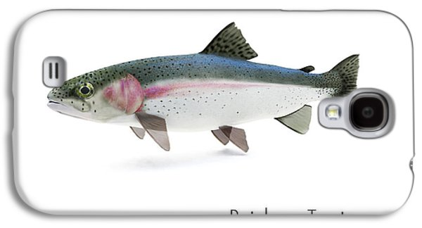 Rainbow Trout Portrait Galaxy S4 Case