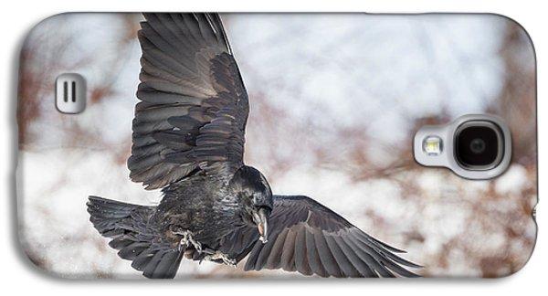 Raven In Flight Galaxy S4 Case
