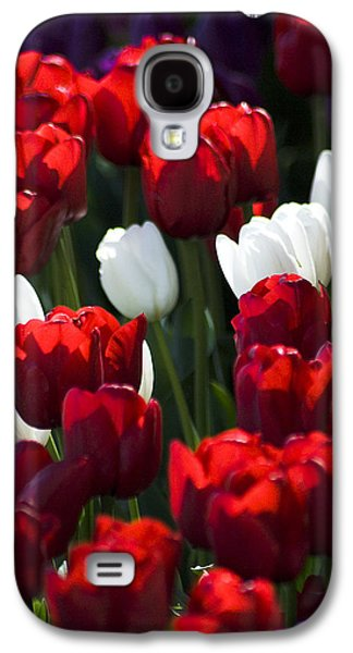 Galaxy S4 Case featuring the photograph Red And White Tulips by Yulia Kazansky