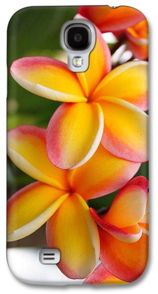 Plumeria Smoothie Galaxy S4 Case by Brian Governale
