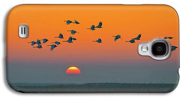 Crane Galaxy S4 Case - Red-crowned Crane by Hua Zhu