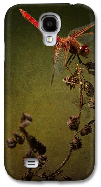 Red Dragonfly On A Dead Plant Galaxy S4 Case