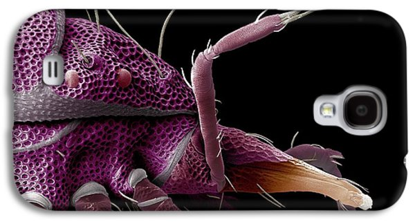 Red-eyed Predatory Mite Galaxy S4 Case by Ecmu Bauchan/us Department Of Agriculture