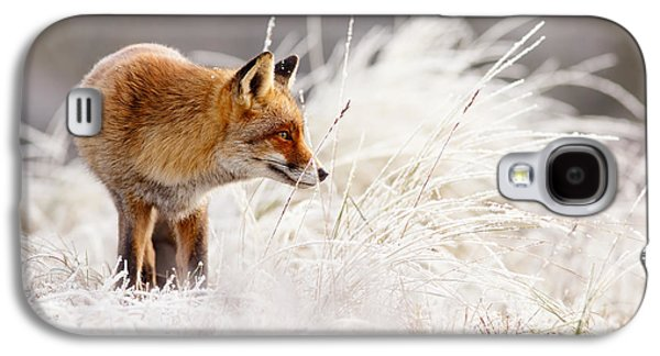 Red Fox And Hoar Frost _ The Catcher In The Rime Galaxy S4 Case by Roeselien Raimond