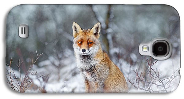 Red Fox Blue World Galaxy S4 Case by Roeselien Raimond