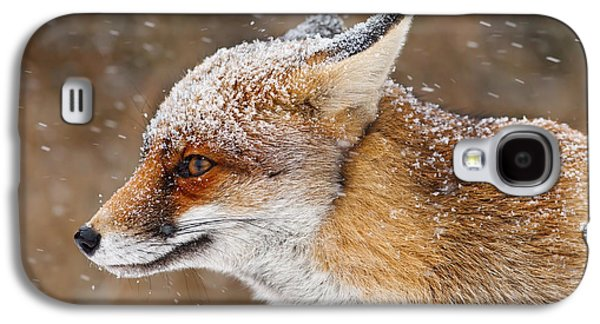 Red Fox In A Snow Storm Galaxy S4 Case