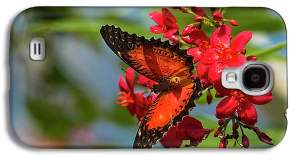 Red Lacewing Butterfly (cethosia Biblis Galaxy S4 Case by Chuck Haney