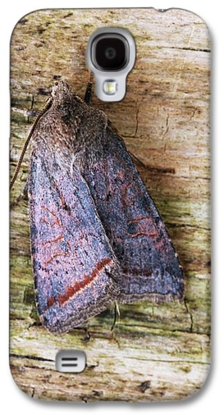 Red Line Quaker Moth Galaxy S4 Case by David Aubrey