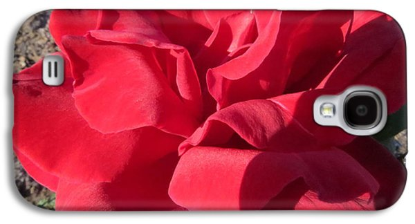 Red Rose II Galaxy S4 Case by Zina Stromberg