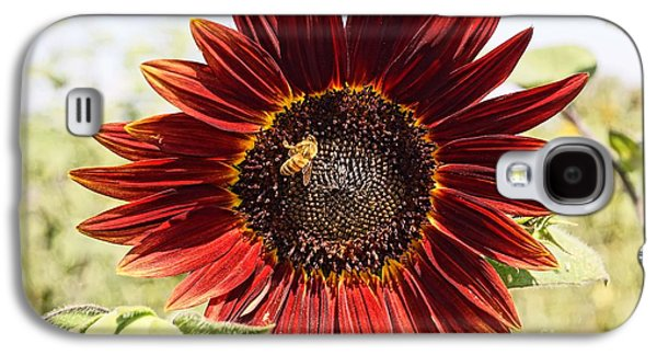Red Sunflower And Bee Galaxy S4 Case by Kerri Mortenson