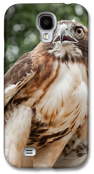 Red Tail Hawk Galaxy S4 Case
