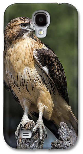 Red Tailed Hawk Galaxy S4 Case