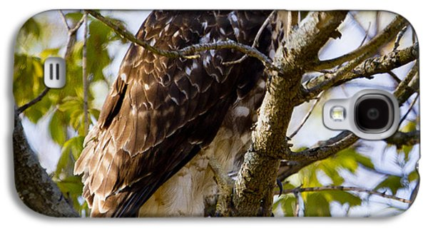 Galaxy S4 Case featuring the photograph Red Tailed-hawk by Ricky L Jones