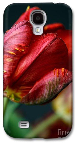 Red Tulip With Dew Galaxy S4 Case by Nailia Schwarz