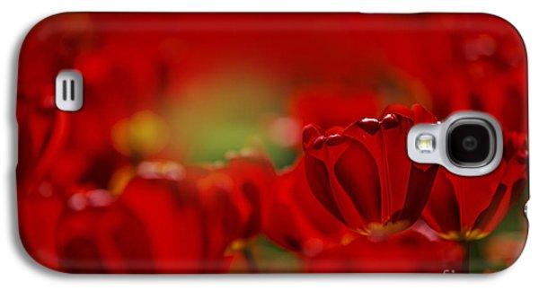 Tulip Galaxy S4 Case - Red Tulips by Nailia Schwarz