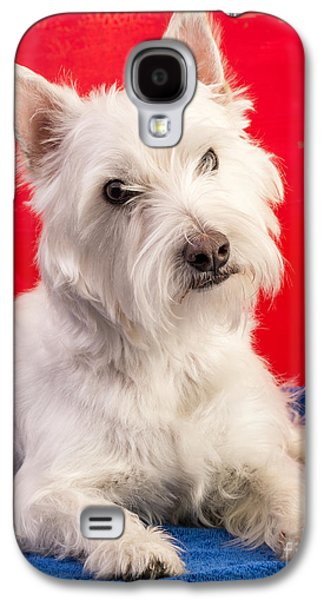 Red White And Blue Westie Galaxy S4 Case