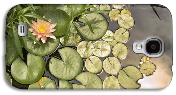 Reflected Light Upon Flowering Water Lilies Galaxy S4 Case