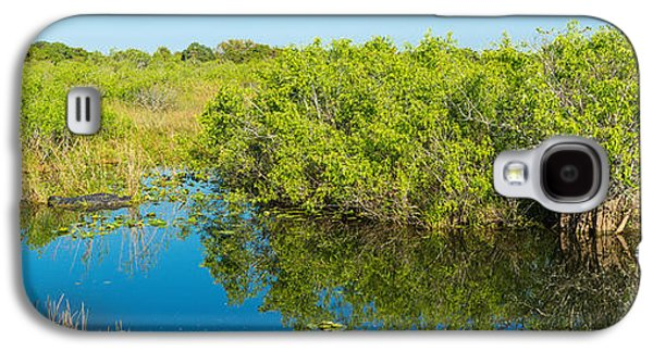 Reflection Of Trees In A Lake, Anhinga Galaxy S4 Case