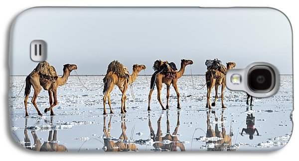 Camel Galaxy S4 Case - Reflections Of An Ancient Life by Trevor Cole