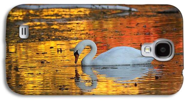 Reflections On Golden Pond Galaxy S4 Case by Jayne Carney