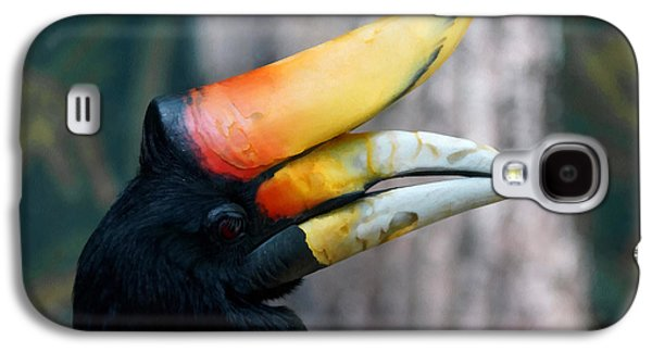 Rhinoceros Hornbill  Galaxy S4 Case by Ernie Echols